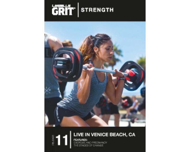 GRIT Strength 11 DVD + CD+ waveform graph