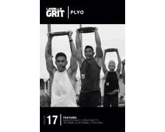 GRIT Plyo 17 DVD+CD+ waveform graph